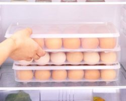 Top 10 Best Egg Holders Reviews in 2021