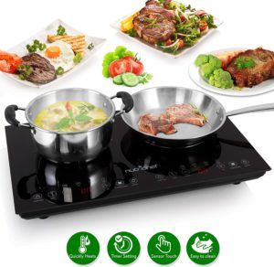 portable induction cooktop costco