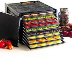 Top 10 Best Cheap Food Dehydrators in 2021