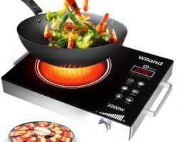 Top 10 Best Portable Induction Cooktops in 2021